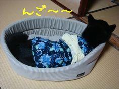 りん浴衣2