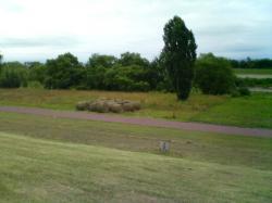 堤防の草刈り 牧草ロール