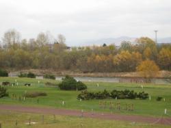 河川敷のパークゴルフ場