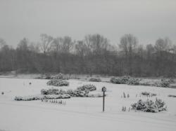 今朝はすっかり雪景色