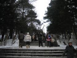 2007年元旦の上川神社