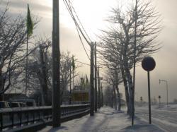 朝日が降ったばかりの雪を照らして