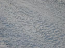 除雪車の跡