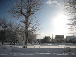 旭川 冬の朝