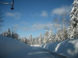 旭岳温泉から下る道