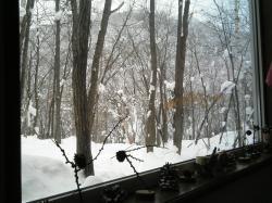窓からは雪の嵐山