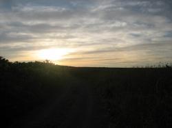 夕陽がきれいです(^^)