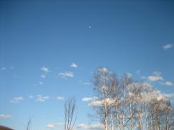 昼間の月・・・