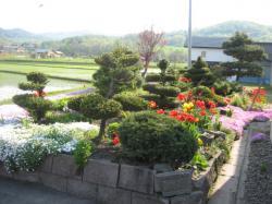 きれいな庭を眺めながらおいしいソフトクリーム(*^_^*)