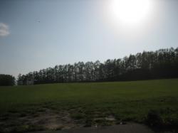 5月の旭川 ~郊外の丘~