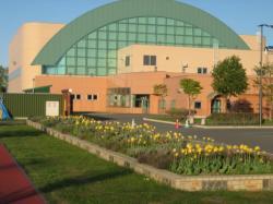 忠和公園体育館 チューリップが咲いていました