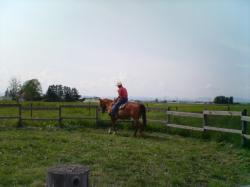 さすが~、かっこいい乗馬姿です(^^)