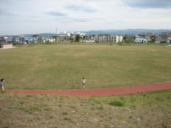 芝生の広場の周りにはウォーキング(ジョギング)できる道も