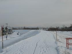 昨夜は凍っていた堤防の道も雪に覆われて