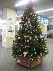 旭川駅に飾られているクリスマスツリー
