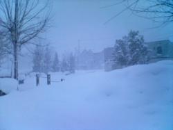 昨日(12/17)は吹雪いてました