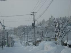 あぁ・・・今朝も雪かき(^_;)