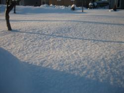 寒かった12/26 散歩コースの公園