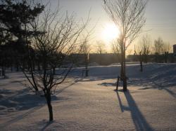 雪の中、夕日がきれいです