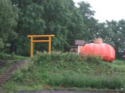 かぼちゃ神社 ご利益ありますよ~(^^)V