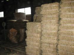 乾草庫には乾草がいっぱい