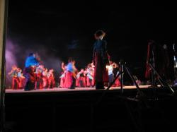 15組のチームが参加 それぞれが個性的な舞を