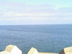 昨夏のオホーツク海