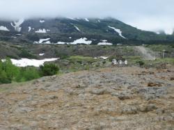 十勝岳望岳台 ウグイスが鳴いていました♪
