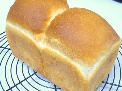 白神こだま食パン