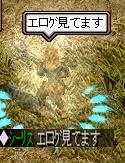 20070306003352.jpg