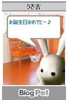 Blog Pet 0623