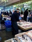 お魚センター2