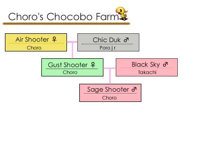 チョコボ血統図071010