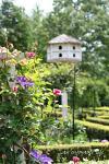 botanic_rose01+.jpg
