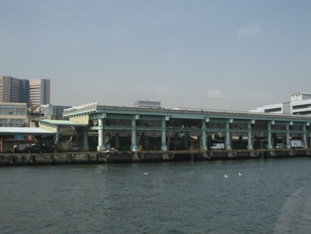 隅田川から眺める築地魚市場