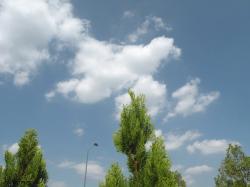 20090916_27.jpg
