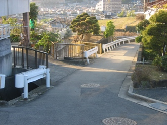 写真 masunari8 016
