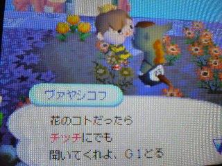 20061210021756.jpg