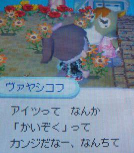 20070328001203.jpg