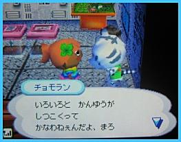20070721011331.jpg