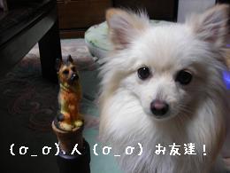 nakama_20071208205949.jpg