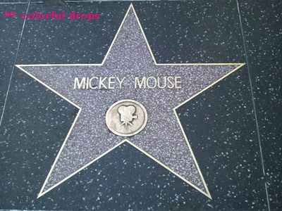 ミッキーの星型