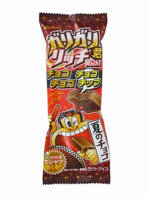 赤城--ガリガリ君リッチ チョコチョコチョコチップ。