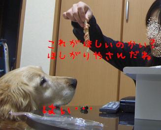 CIMG1388.jpg