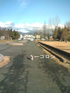 20050210161006.jpg