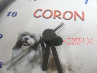 coron142.jpg