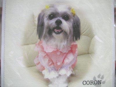 coron84.jpg