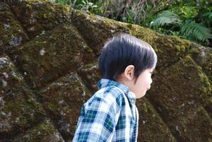 2009-03-21_20.jpg