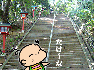 takao_10.jpg