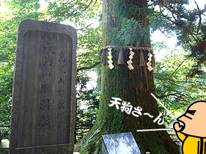 takao_11.jpg